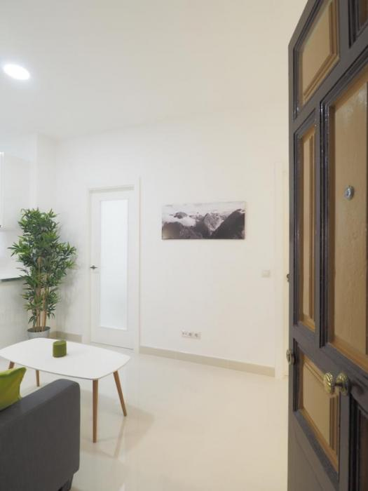 Nice expat rental apartment in Madrid