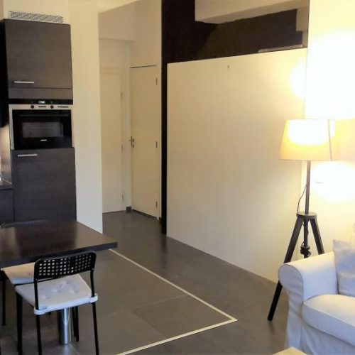 Attractive expat apartment in Antwerp Centre