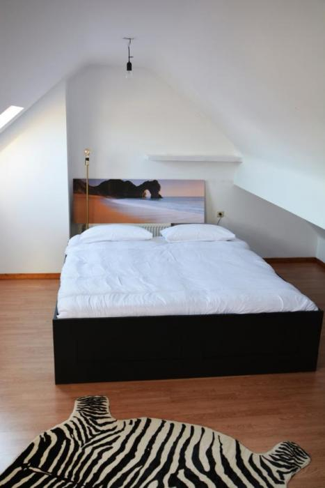 Central apartment in Antwerp for rent
