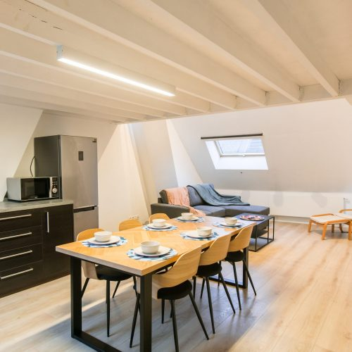 Apartamento azotea en Amberes para expats