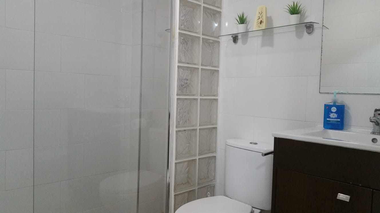 apartment near university for expats