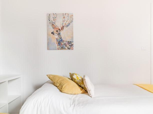 Bilbao apartment for expats in the city centre