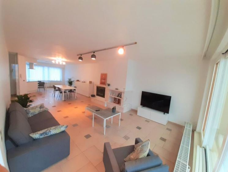 Brede - Big expat house with terrace in Hemiksem
