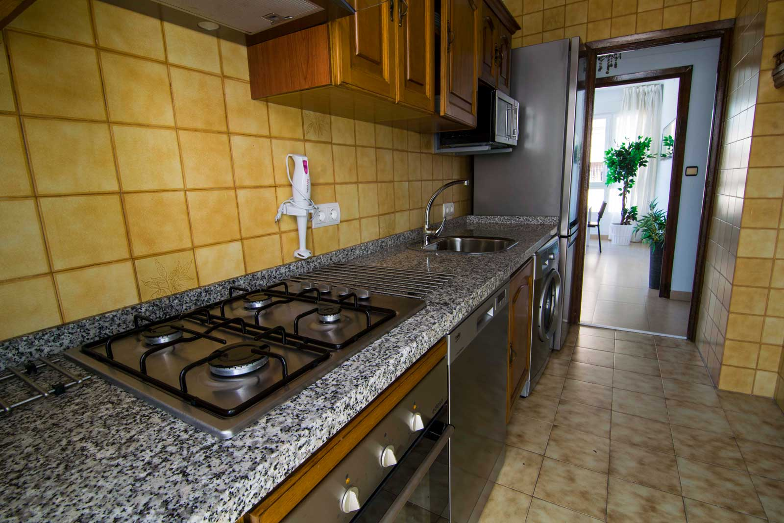 Spacious apartment in Malaga for expats