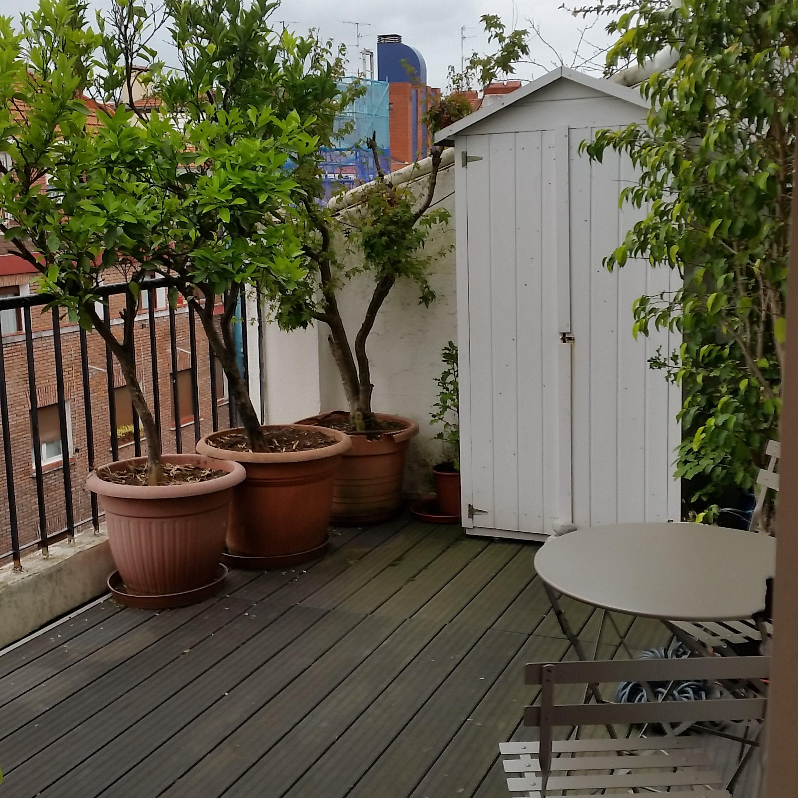 Apartamento para expats en Bilbao con terraza