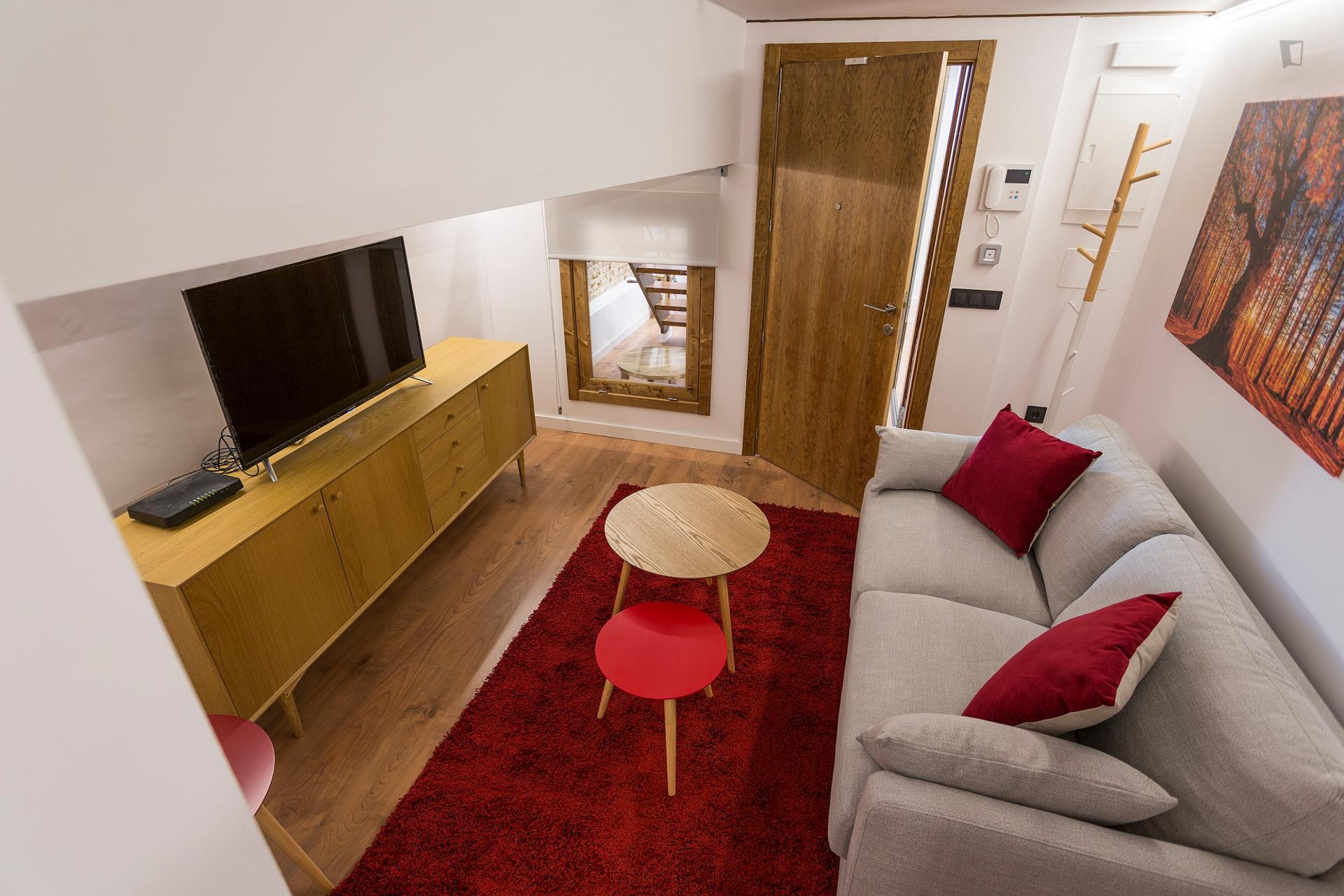 Torrecilla 2 - One bedroom flat in Madrid