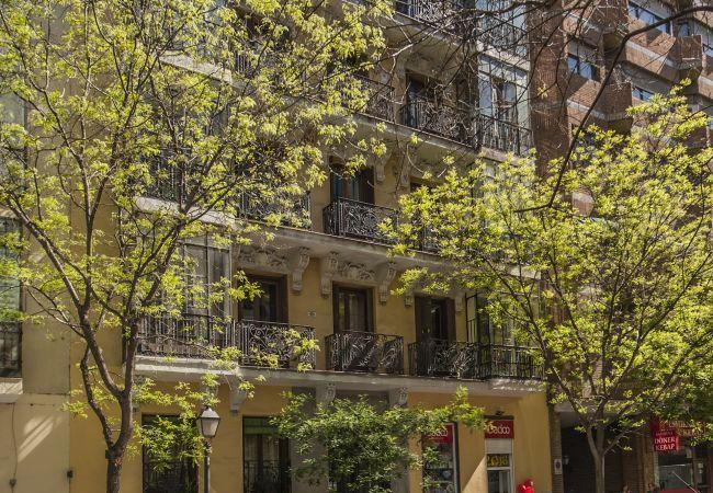 Lujoso estudio en Madrid