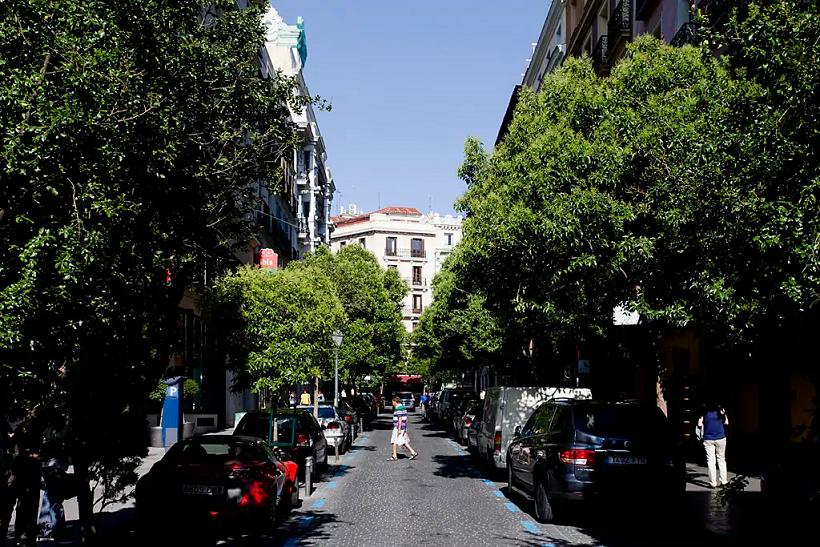 Manuela - Estudio Madrid casco antiguo