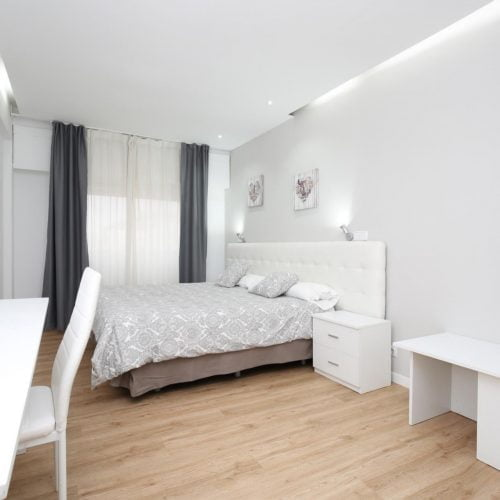 Leon - Piso de un dormitorio en Madrid centro