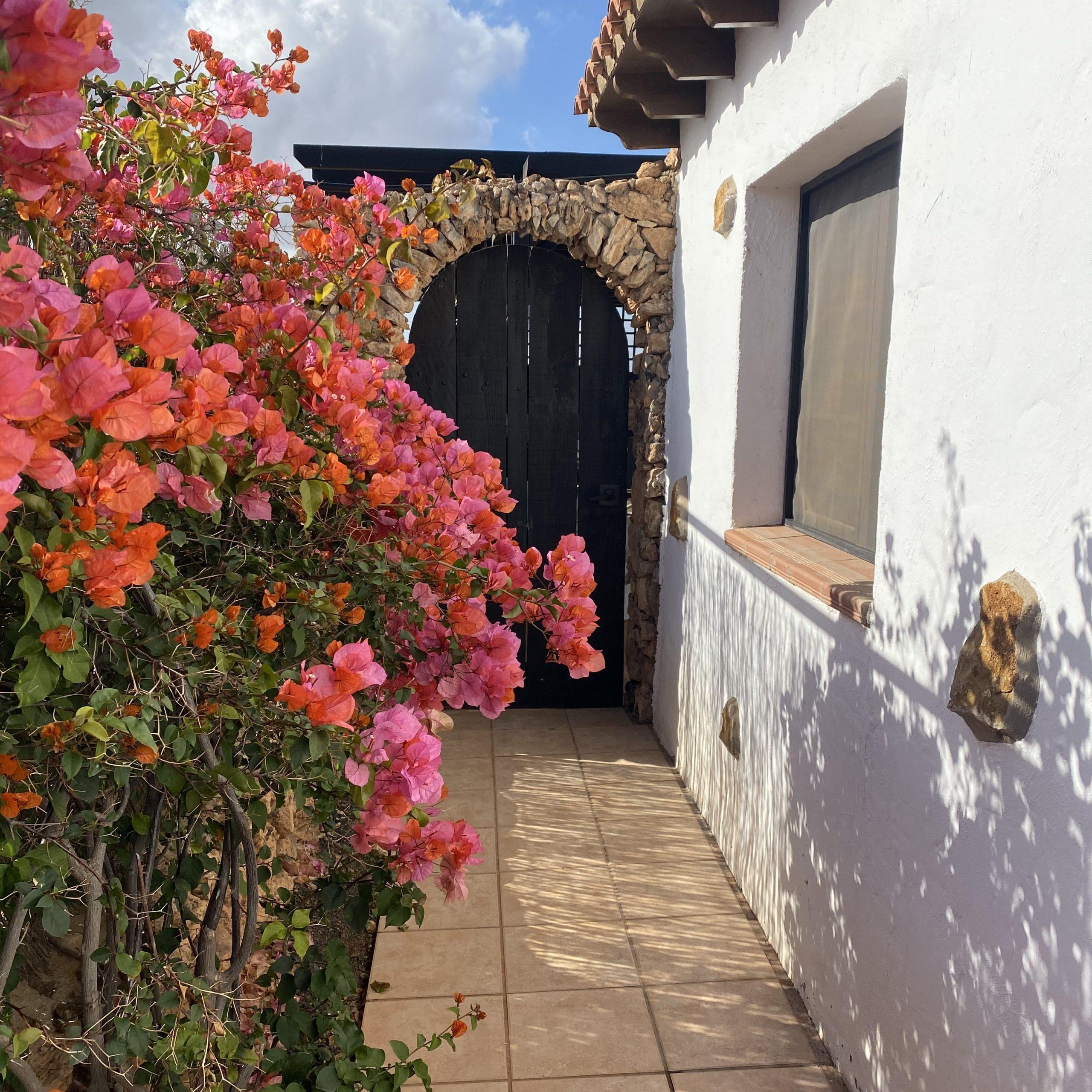 Villa Vital - Coliving for expats on Fuerteventura