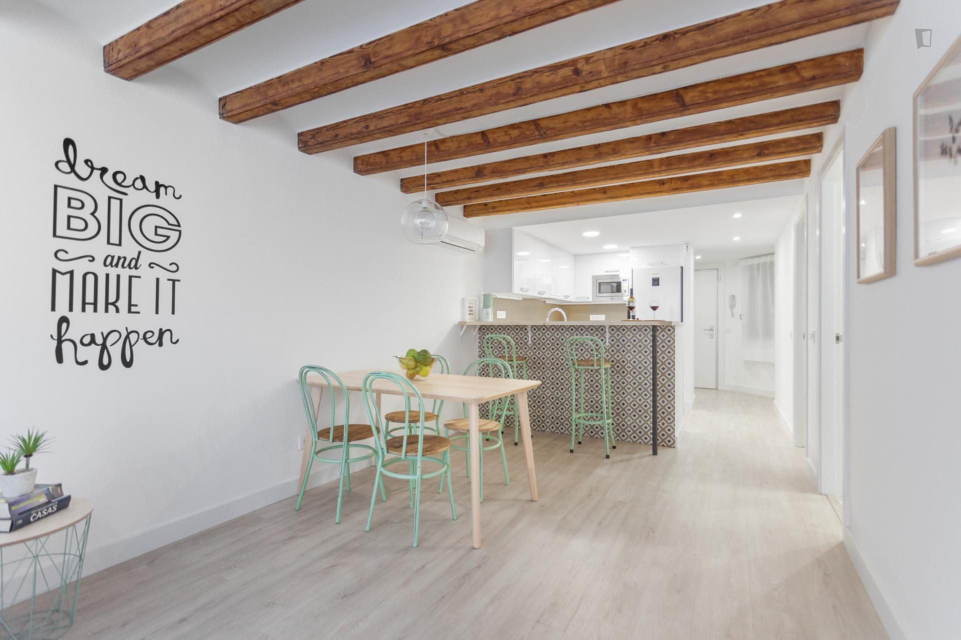 Paloma 2 - Reformed flat for expats in Barcelona
