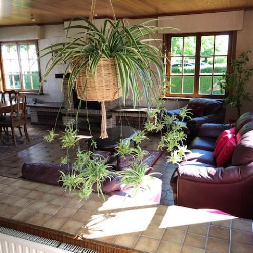 Dennendreef - Furnished accommodation in Ghent