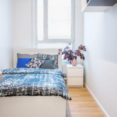 Roman 2 - Spacious bedroom in Krakow