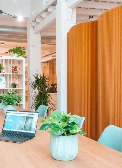 Guided remote working programs for companies